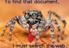 Corporate Spider