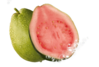 guava Avatar