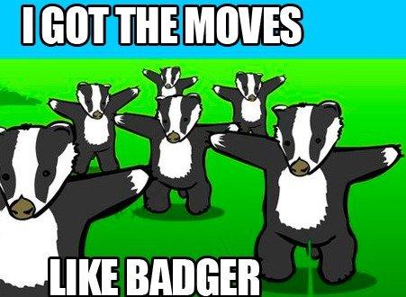 Badgers got moves. .. Honey Badger don't give a . I got the moves  badgers mick faggot jagg