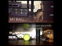 BALL. . BALL