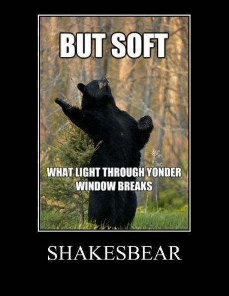 """bear"" with me. its science cuz its a bear. Itim rrt/ buns"
