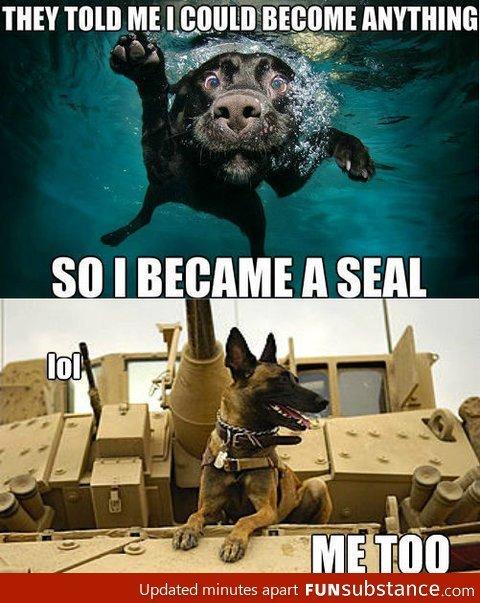 Became a seal. .. Me too Became a seal Me too