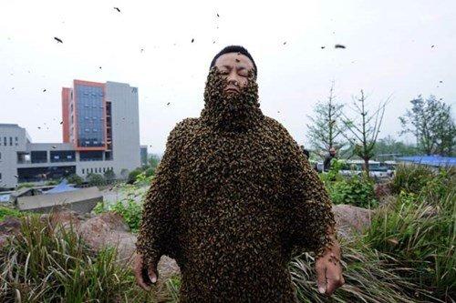 Bee yourself. . Bee yourself