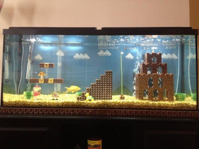 best aquarium ever !. do want !. Parers' it tarr' Pr' best aquarium ever ! do want Parers' it tarr' Pr'