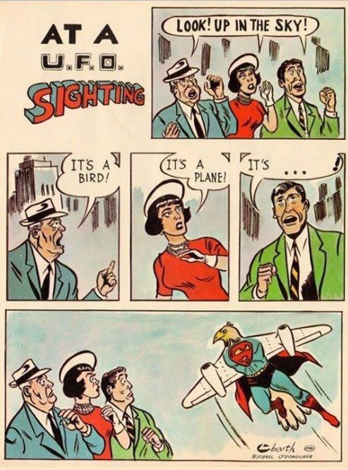 Birplaneman?. .. It`s a bird-plane! Birplaneman? It`s a bird-plane!
