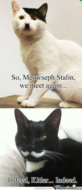 :). . Stalin, we meet siv, . :) Stalin we meet siv