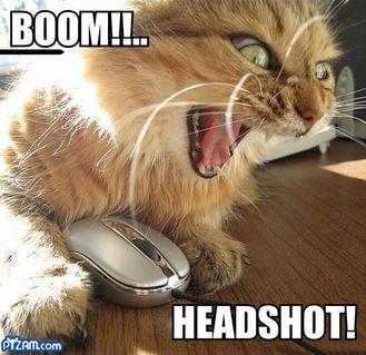 BOOM HEADSHOT!. .. I lol'd for soooo long! Tommy Bear