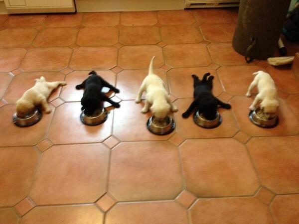 Breakfast Time!. . Breakfast Time!
