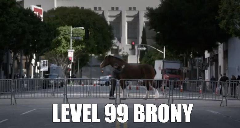 Budweiser Commercial. .. I loved horses before I found MLP super bowl Budweiser