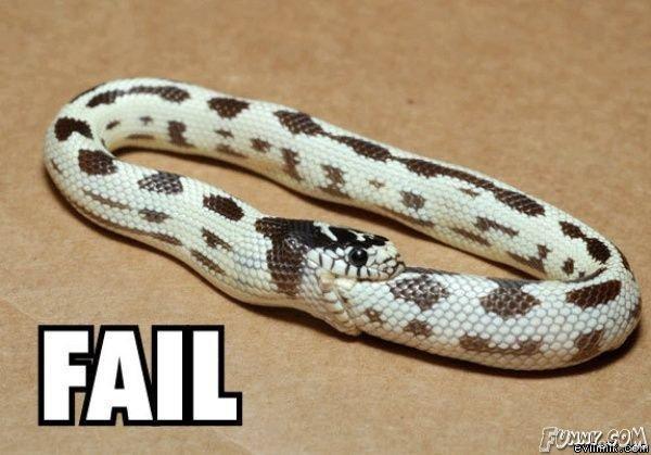 Fail. Ekans Fails!.. And so infinity begins. Snake fail Ouch