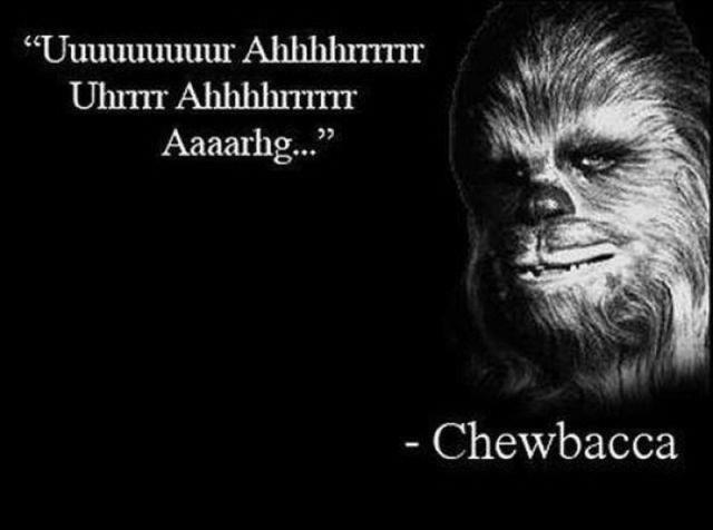 "Fcking words of wisdom. . Chewbacca. ""Arrrrrrrrr"" -Horatio 'Sea Captain' McCallister Chewbacca star wars wise words"
