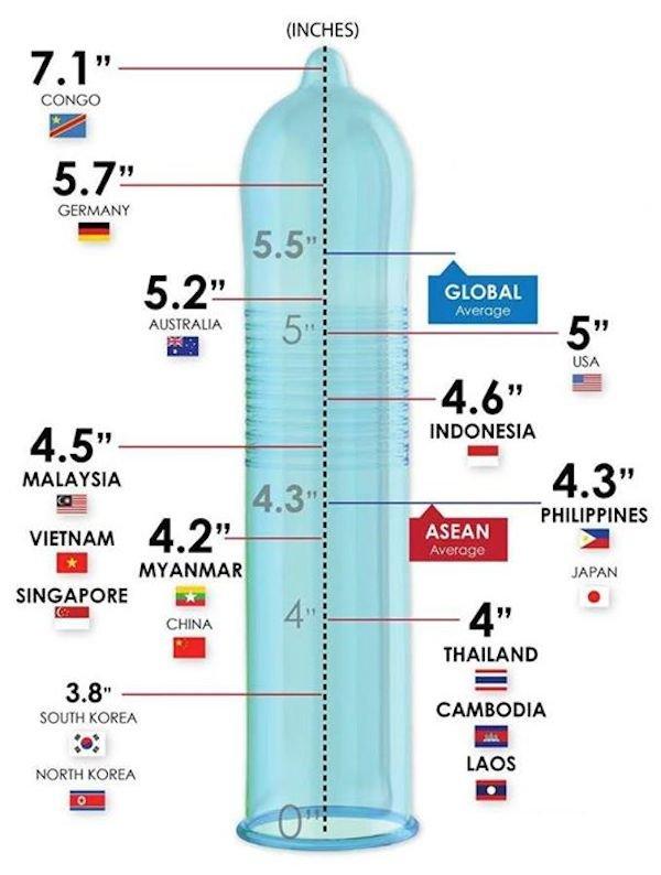 Finally above average!. of south korea.... INCHES) CONGO SHMART illest I . manna: - JAPAN THAILAND UREA CAMBODIA an H mos NORTH KOREA. North Korea Finally above average! of south korea INCHES) CONGO SHMART illest I manna: - JAPAN THAILAND UREA CAMBODIA an H mos NORTH KOREA North Korea