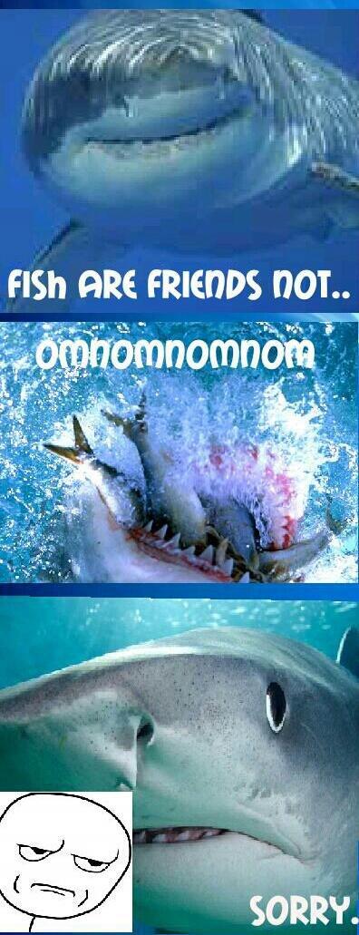 fish are... oh.. . Fish ORE FRIENDS . Nemo Fish Friends Shark