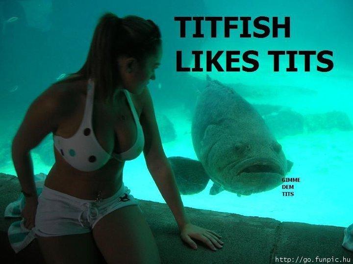 FISH AND TITS. .. mmm a fish. tits. a fish with tits. titty-fish ASS tits Fish big tits niggers white bitches elmo sex