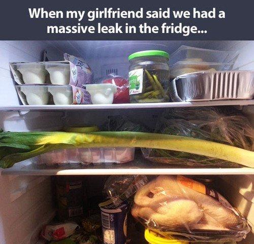 Fix this leak right away!. . When my girlfriend said we had a massive leak in the fridge.... OH GOD leak Fridge pun tag