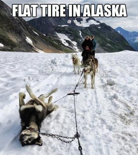 Flat tire in alaska. .. Spare tire in Alaska flat tire funny