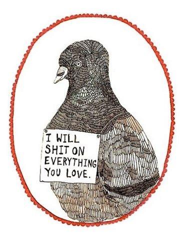 "fuckin birds. YOU TAGS.. I "" Illgal& MIN Melli chillpill? ' ll Alil I ? lolilol be shittin on all the loved"