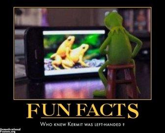 fun fact. . fun fact