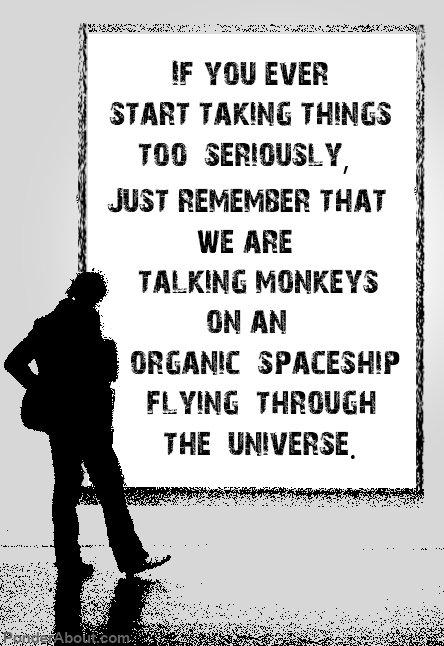 Just Remember. Just Remember. monkeys Cars crashes