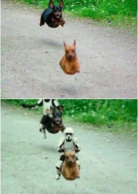 New Star Wars scene leaked. . New Star Wars scene leaked