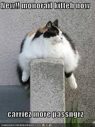 New Monorail cat. maor passengers. cat Wall Fat monorail