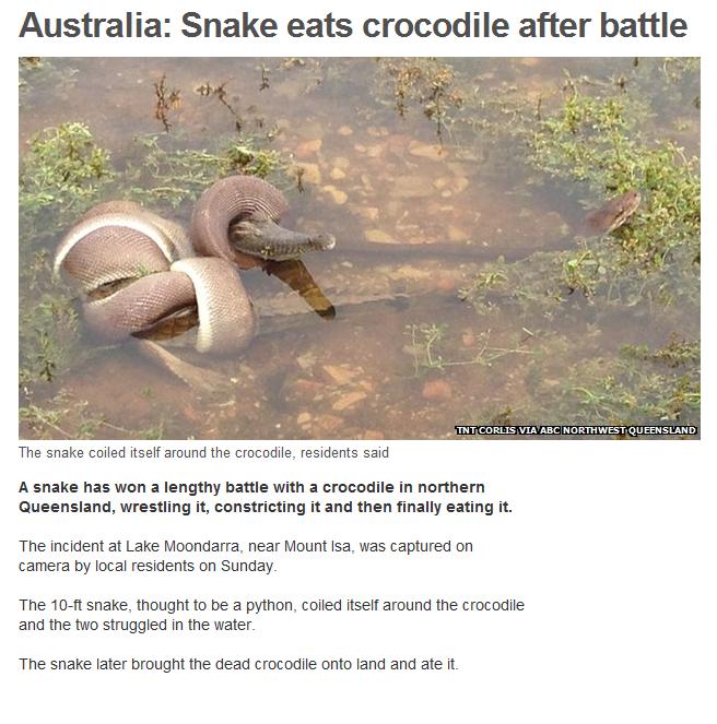 Nope. Source: www.bbc.co.uk/news/world-asia-26413101 Nope Nope Nope Nope Nope Nope Nope Nope Nope Nope Nope Nope Nope Nope Nope Nope Nope Nope Nope Nope Nope No nope