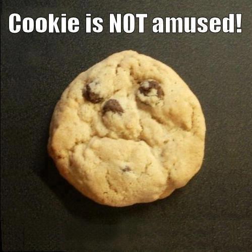Not amused!. . cookie is NOT amused! Not amused! cookie is NOT