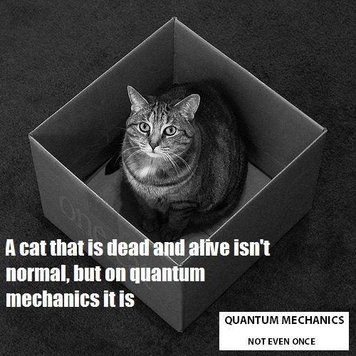 Not even once. Implying that I need a description. xx Ham It sauna! IS Ilsa [Lame ISM normal. but on quantum mechanics It is QUANTUM MECHANICS HUT EVEN l'.' AHC Not even once Implying that I need a description xx Ham It sauna! IS Ilsa [Lame ISM normal but on quantum mechanics is QUANTUM MECHANICS HUT EVEN l' ' AHC