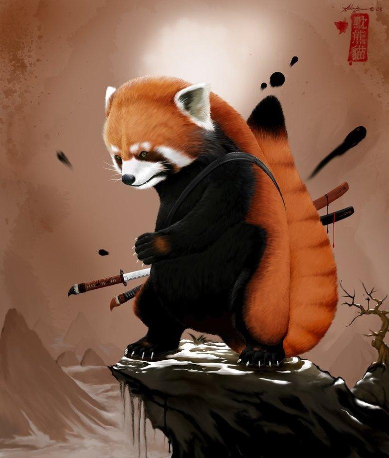 Not extinct yet!. Deadly red panda.. Yay for red pandas red panda