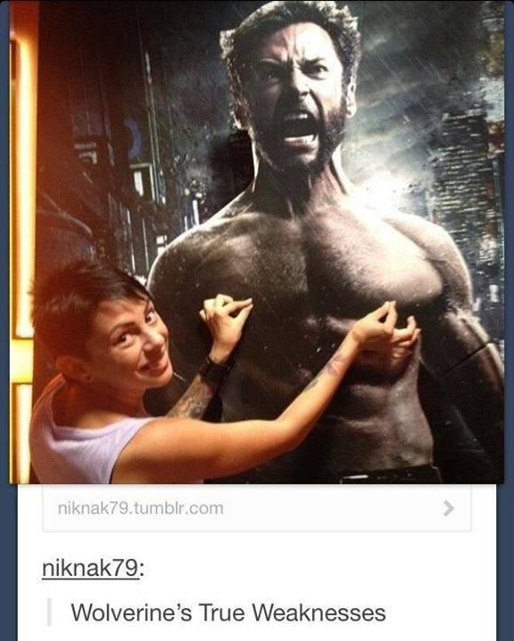 Not so Titanium Nipples.. Giving anyone a purple nurple is painfu.. Wolverines True Weaknesses. adamantium faggot Wolverine nipples
