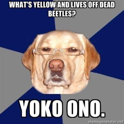 Racist Dawg strikes again. I love this meme.. irl Racist dawg yoko ono