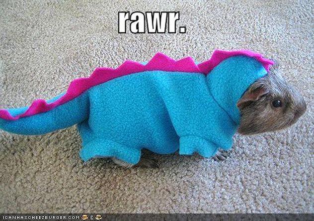 rawr. .. Oh No!!!! Its A guine sauraus rex!! HHHHHHNNNNNNNGGGGGGGGGRRRRR rawr Oh No!!!! Its A guine sauraus rex!! HHHHHHNNNNNNNGGGGGGGGGRRRRR