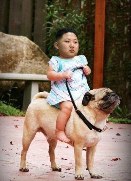 Ready to Rumble. .. A CNN news update: Korea has unleashed the dogs of war Ready to Rumble A CNN news update: Korea has unleashed the dogs of war