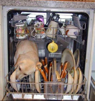 Redneck Dishwasher. .. russianbro Redneck Dogs