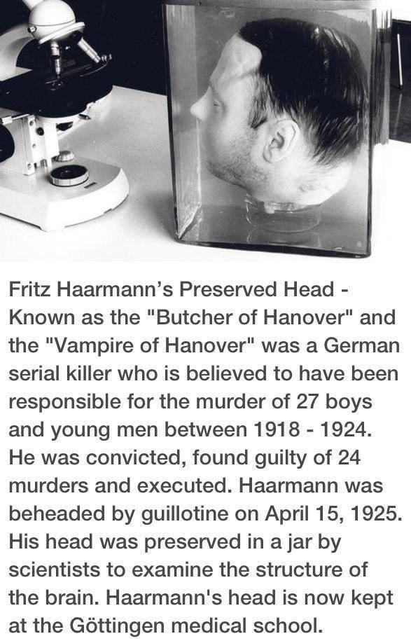 "Relish. QWVBHJ GWE CVBNM FGVB GH E SDFGH RTYUIO\ OIJHBEDFV FV NJ ASXCFGH?. Fritz Hartmann' s Preserved Head - Known as the ""Butcher of Hanover"" and the ""Vampire beheading fritz haarman serial killer likes young boys fuck tags"