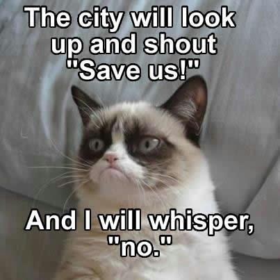Rorschach cat!. . up and Shh Rorschach cat! up and Shh