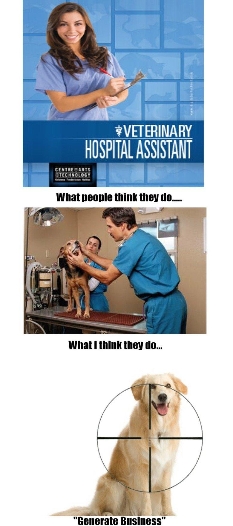 Veterinary Assistants.... Creepy . ics-'... HOSPITAL ASSISTANT What DEBBIE HWY ...- Veterinary Assistants Creepy ics-' HOSPITAL ASSISTANT What DEBBIE HWY -