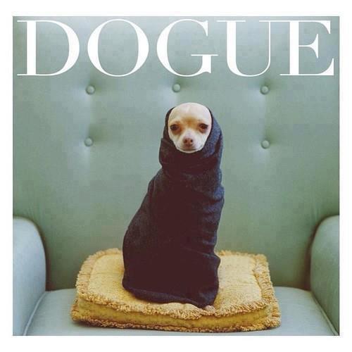 Vogue. . Vogue