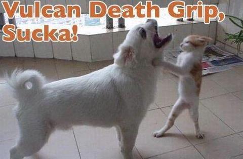 Vulcan Death Grip. Whats next?.. there is no vulcan death grip vulcan death grip cat Dog beat Scratch OVERPOWER Sucka sucker