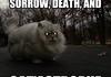Cat'Aclysm